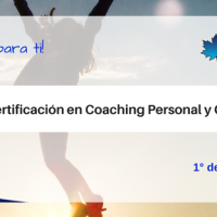 Curso de Coaching personal y PYME